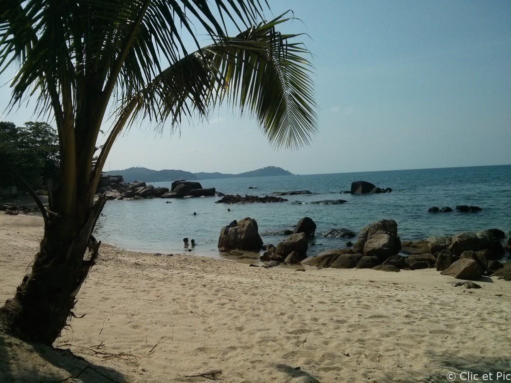 Perhentians : Plage et palmiers